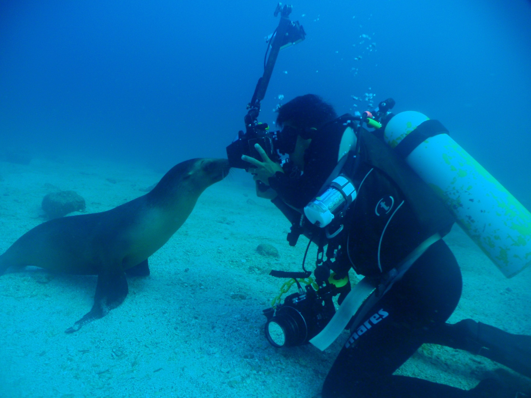 Fun Baja La Paz Mexico Bluewater Dive Travel
