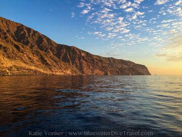 Guadalupe Island - Katie Yonker