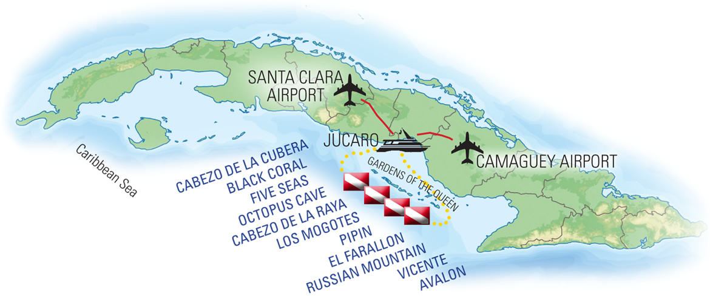 Jardines Aggressor Cuba