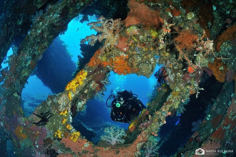 SMY Oceanic Liveaboard