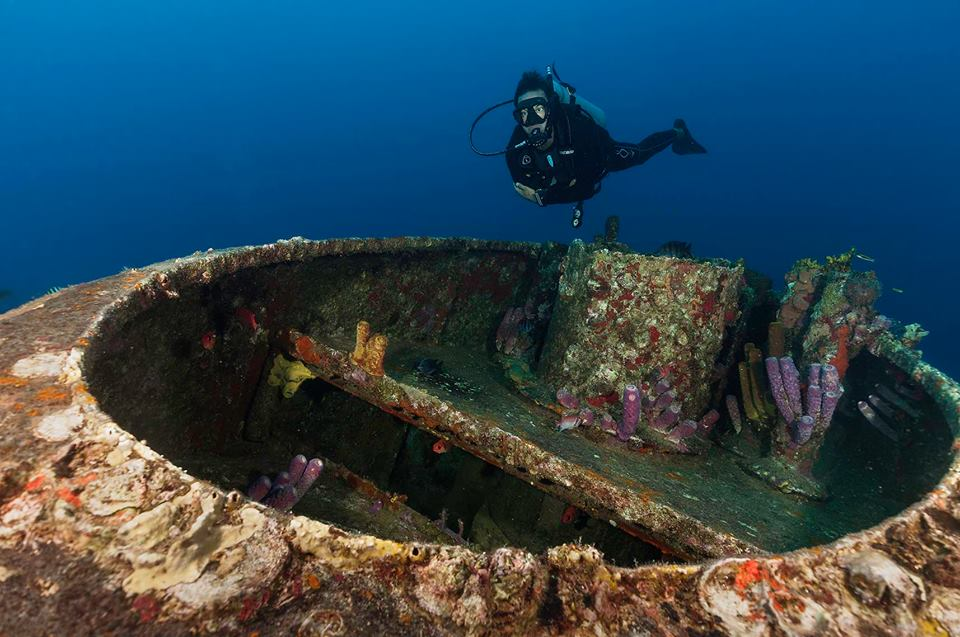Reef Oasis Dive Club Viva Dominican