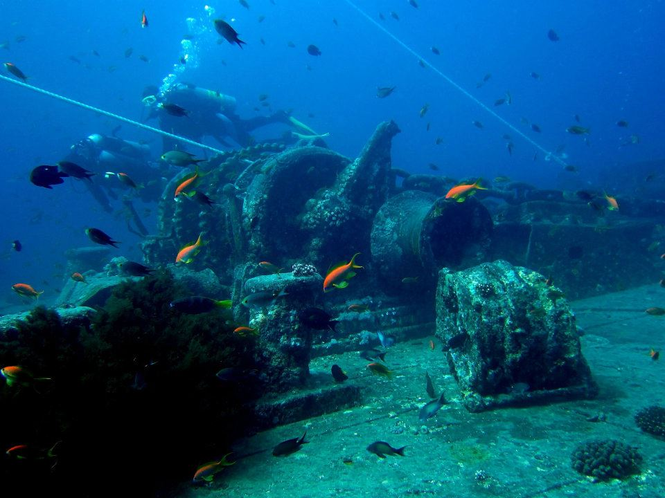 Reef Oasis Dive Club Sharm El Sheikh