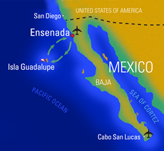 Guadalupe map