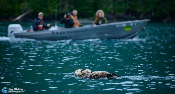 Alaska June 2017 Trip