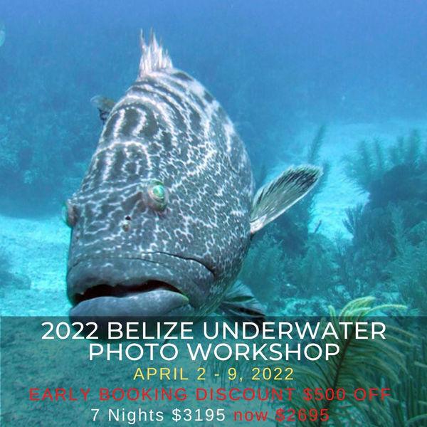 Belize Photo Workshop 2022