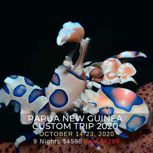 PNG Custom Trip 2020