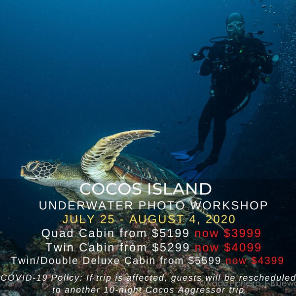 Cocos Island Underwater Photo Workshop