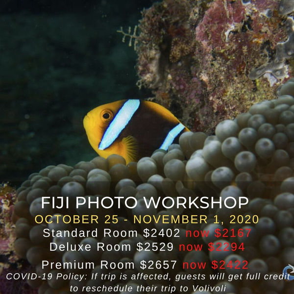 Fiji Photo Workshops