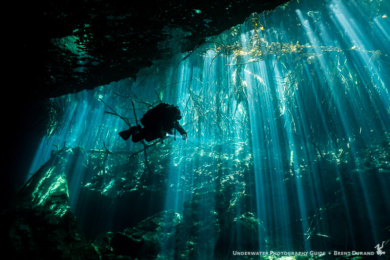 Yucatan Scuba Diving Travel Guide Dive Resorts Best Time To Dive Bluewater Dive Travel