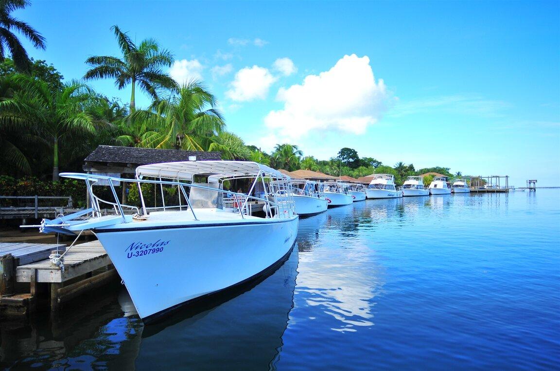 Anthony 39 s key scuba diving resort in roatan bluewater for Roatan dive resort