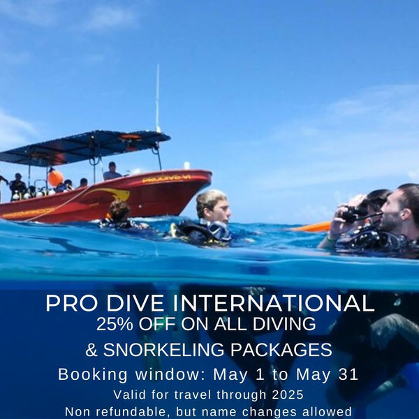 Pro Dive Special May 2020