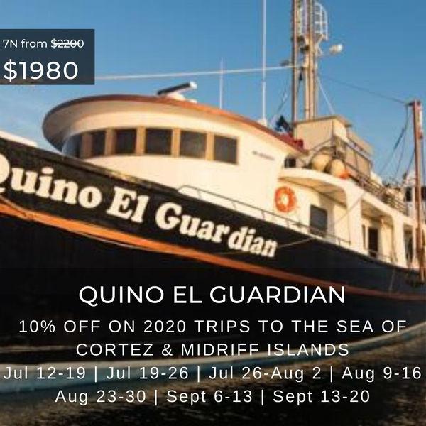 Quino El Guardian Special May 2020