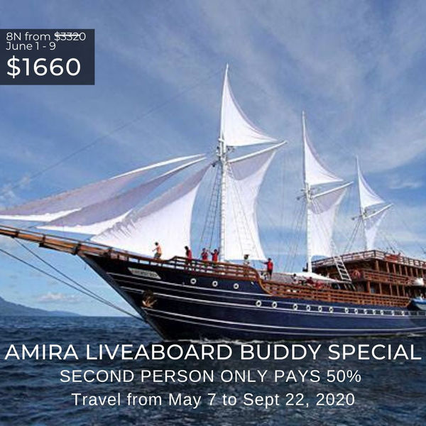 Amira Liveaboard Special May 2020