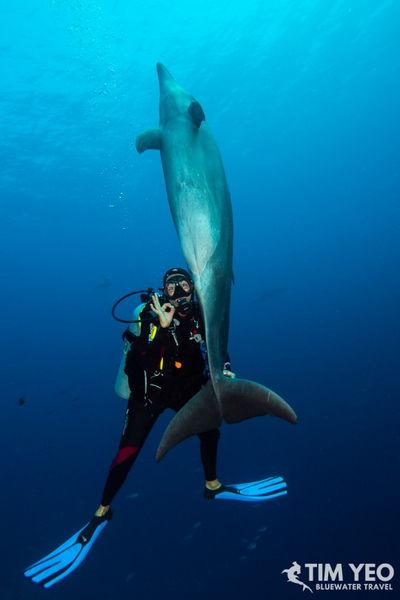 French Polynesia Trip Recap 2019
