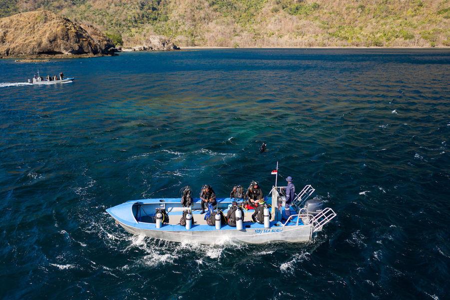 msy seahorse dinghy