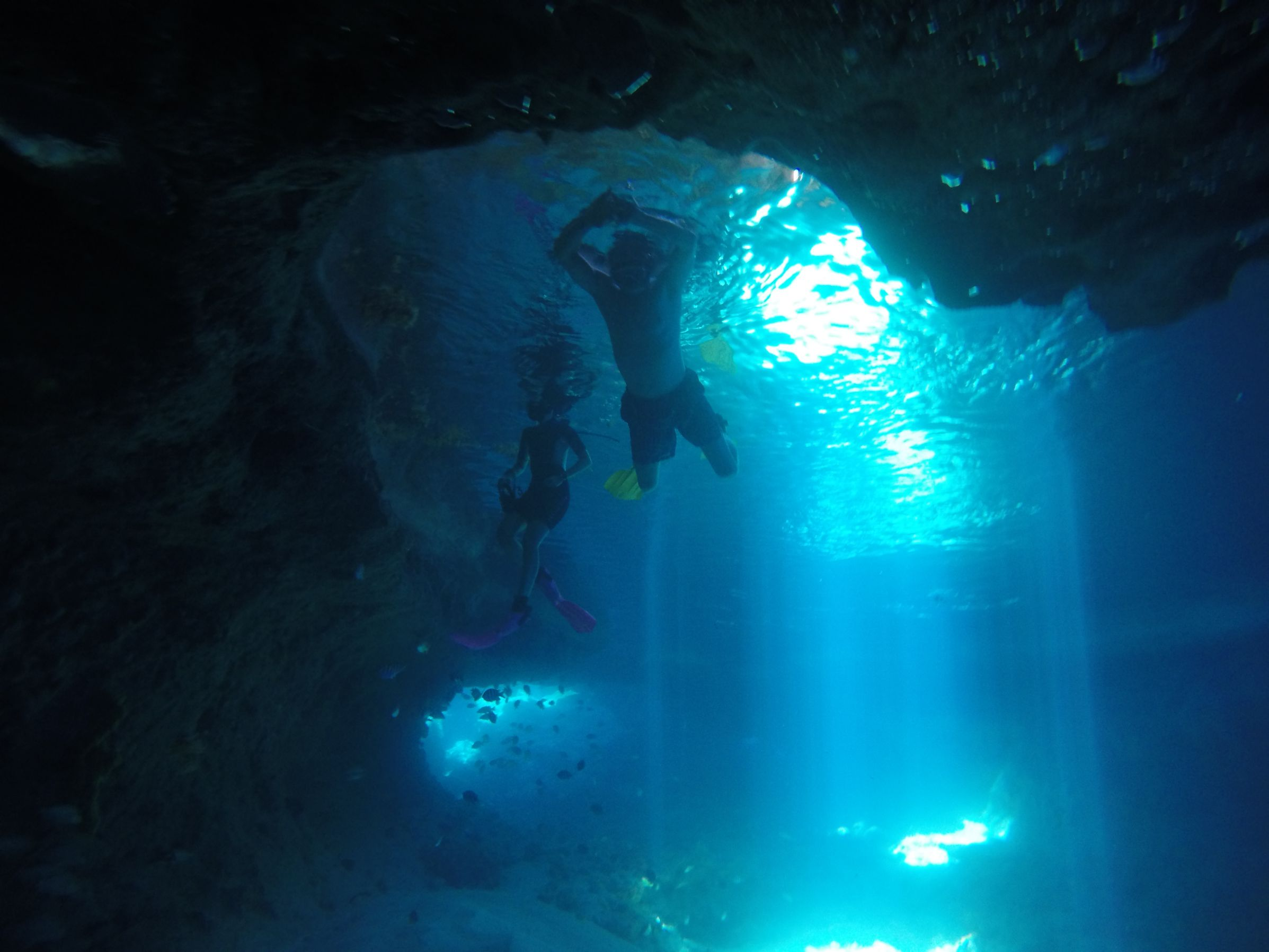 Phoenix Liveaboard Bahamas underwater
