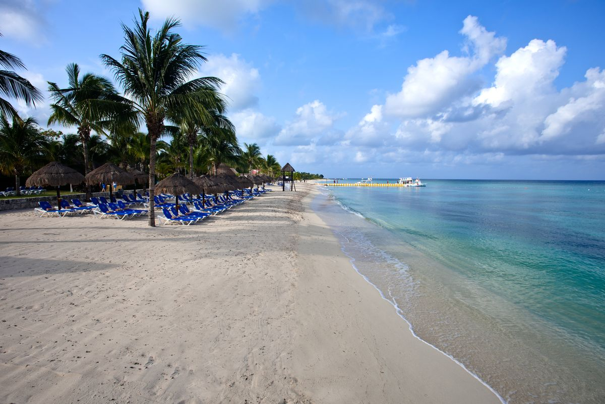 Allegro cozumel resort pro dive mexico dive packages facilities pricing reviews and - Cozumel dive packages ...