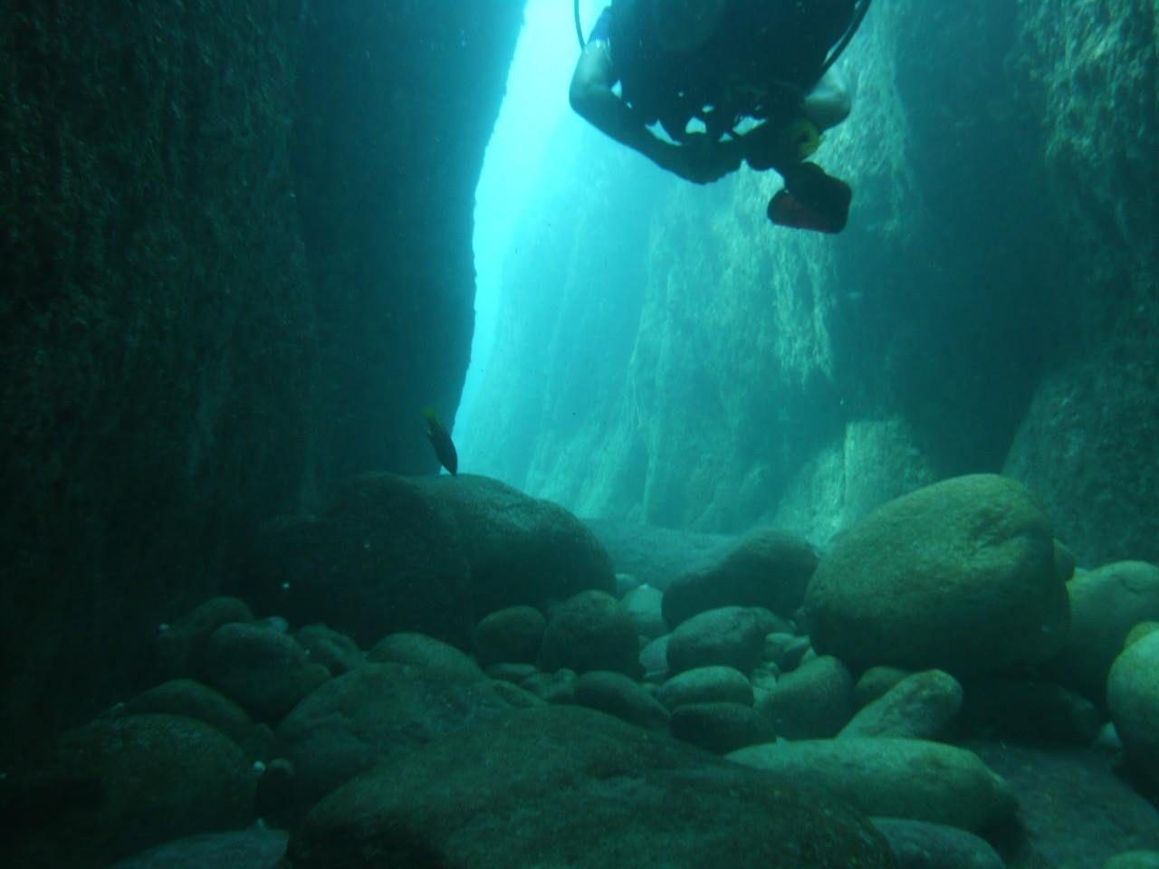 Diving in Sea of Cortez - Bluewater Dive Travel