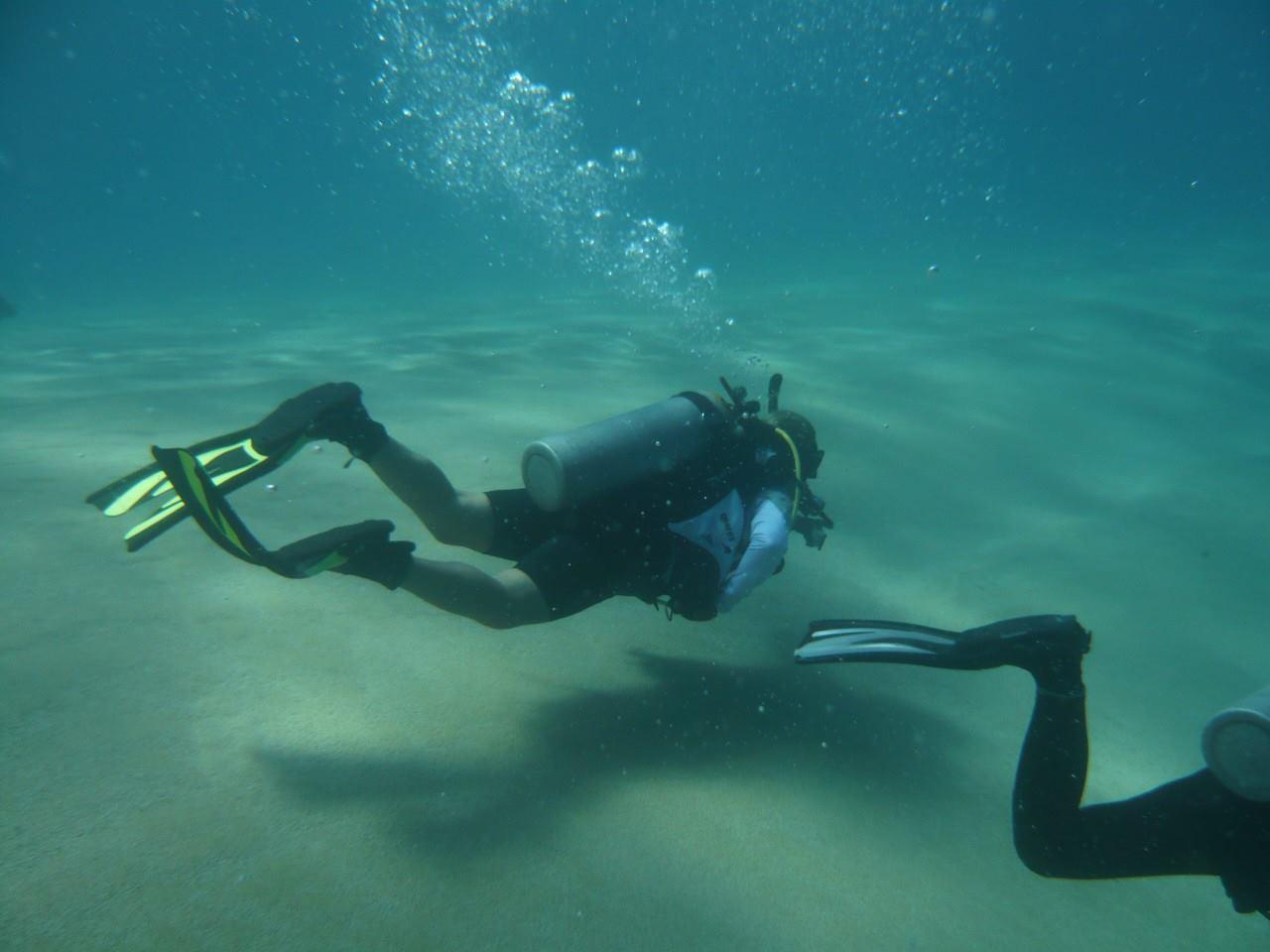 Sea Of Cortez La Paz Dive Travel Guide Best Dive Resorts Best