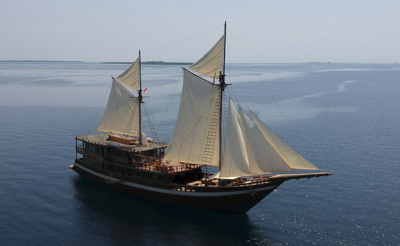 Coralia Liveaboard Reviews & Specials - Bluewater Dive Travel