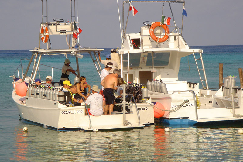 Dressel divers cozumel dive trip reviews photos special - Cozumel dive sites ...