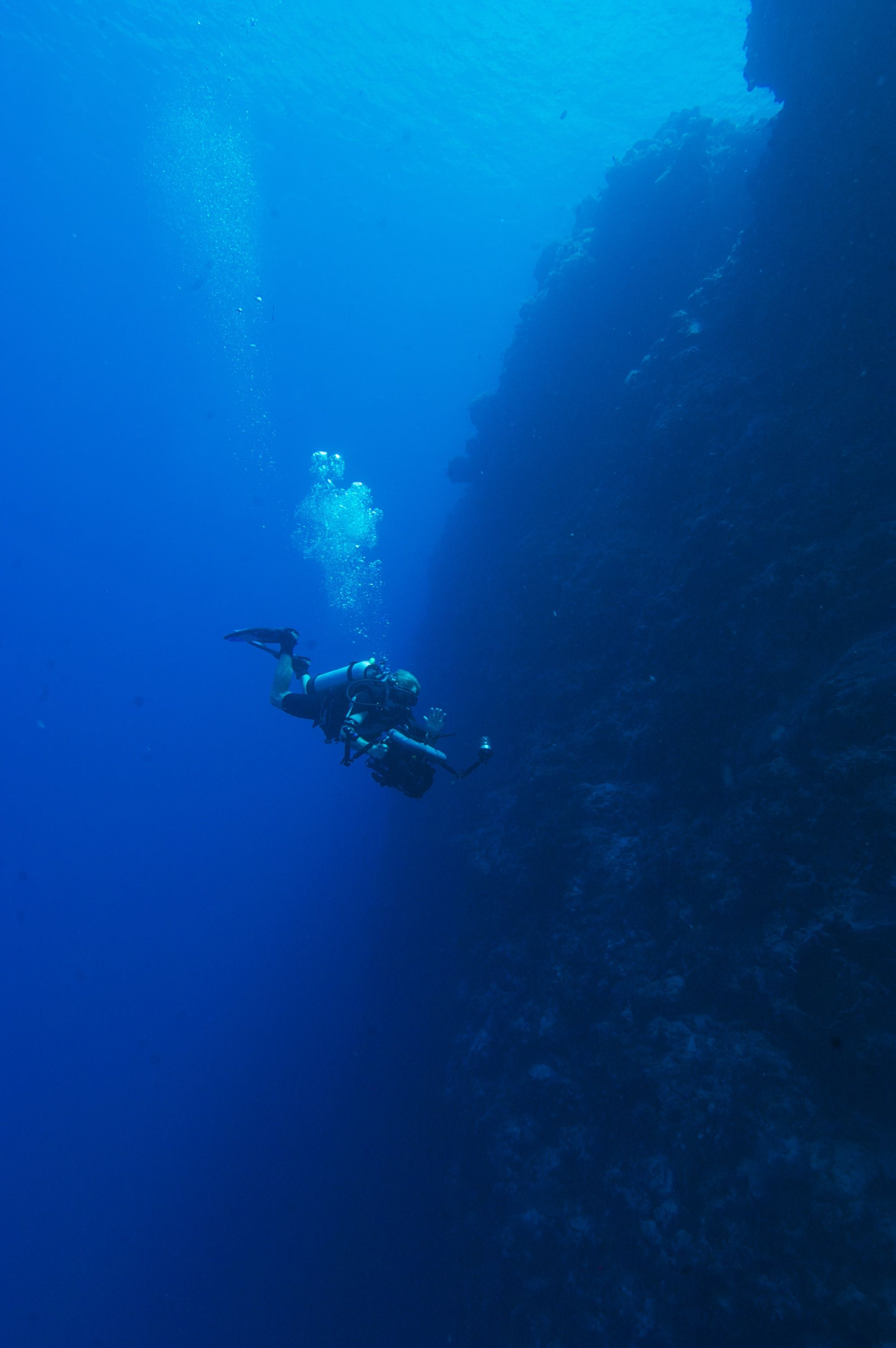 Palau scuba diving travel guide best dive resorts liveaboards best time to dive bluewater - Dive time tours ...
