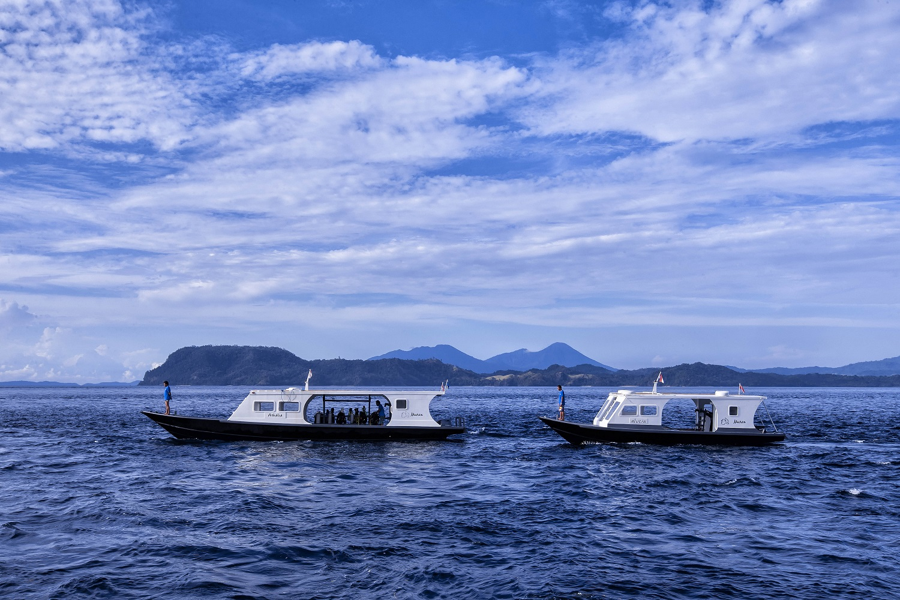 murex dive resort bangka reviews specials bluewater dive travel