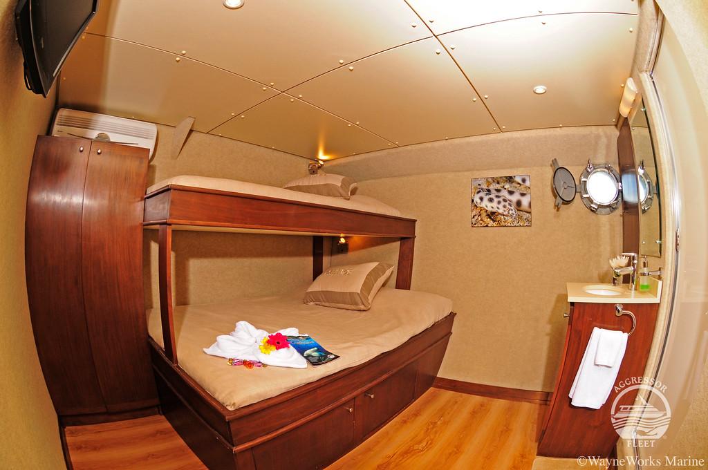 Okeanos Aggressor I double cabin