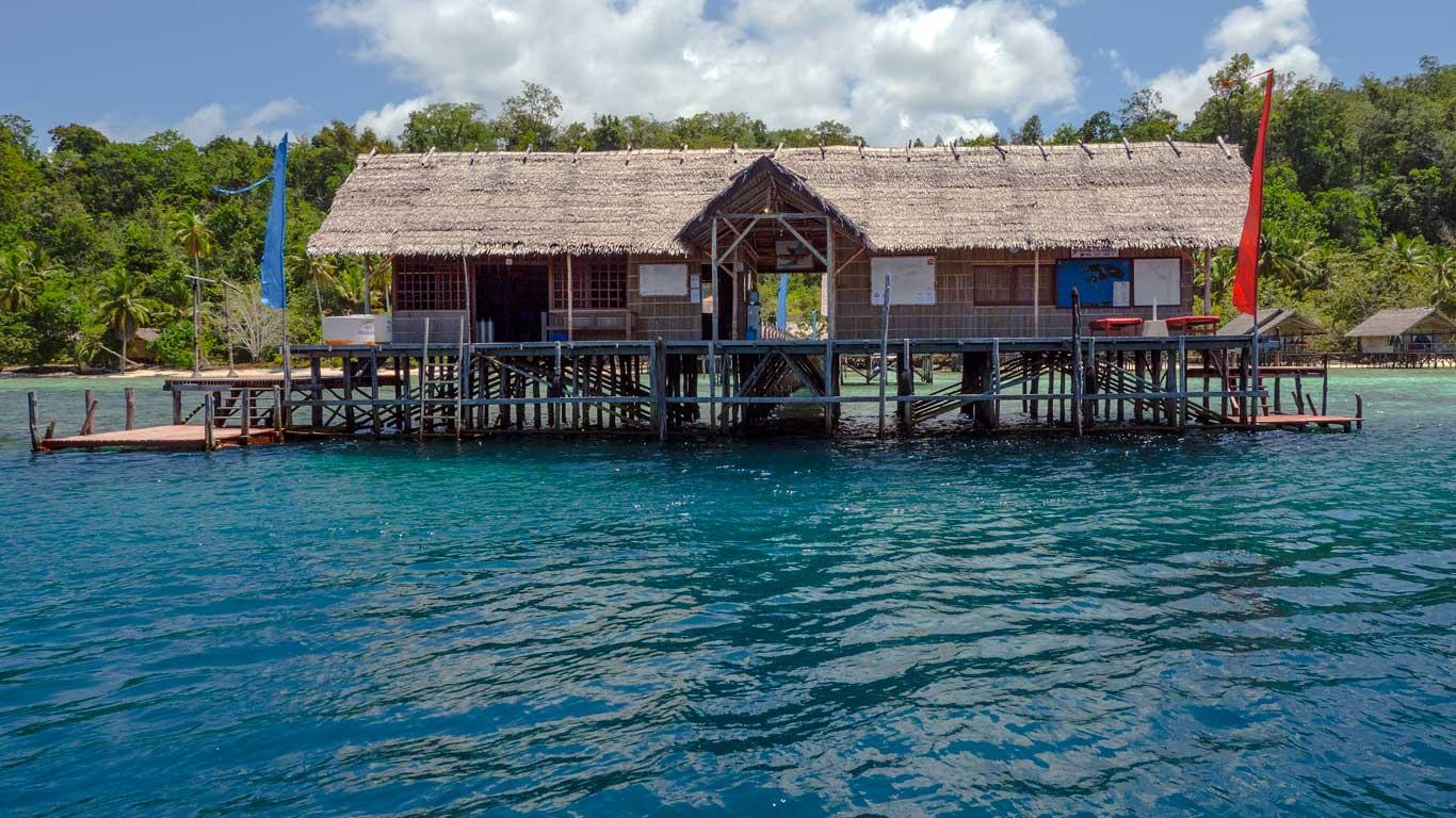 Papua explorers dive resort raja ampat reviews specials bluewater dive travel - Raja ampat dive resort reviews ...