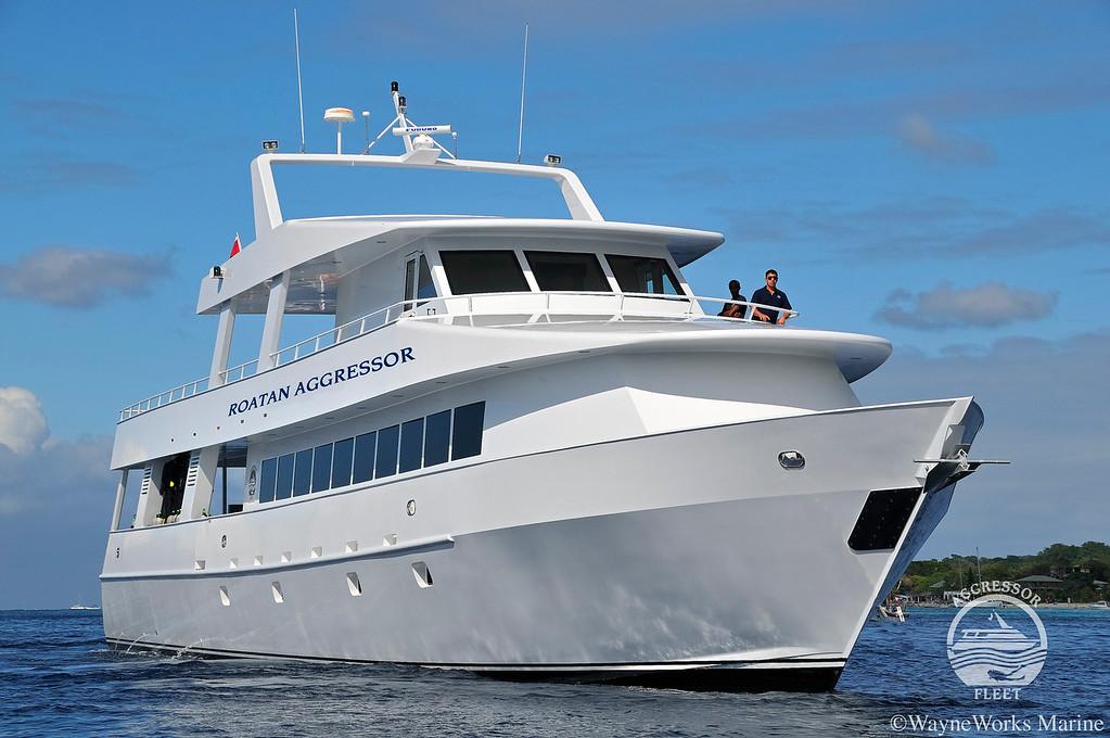 Roatan aggressor liveaboard reviews specials bluewater - Roatan dive sites ...