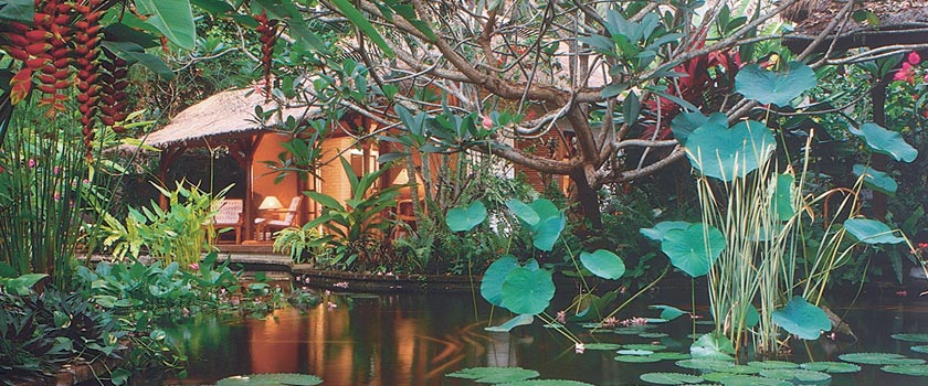 Watergarden Hotel Spa Candidasa Reviews Specials