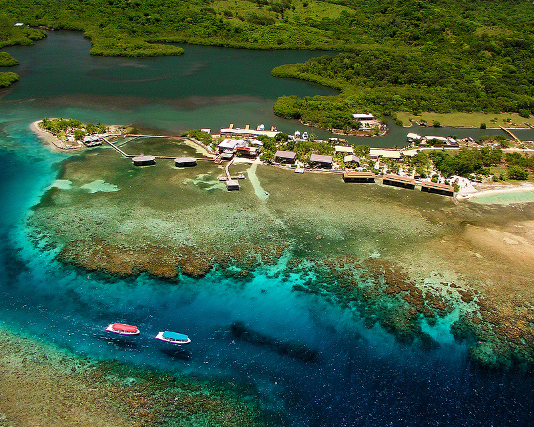 Coco view resort roatan reviews specials bluewater for Roatan dive resort