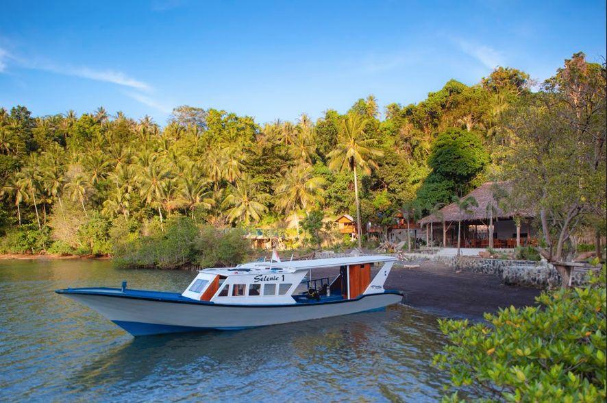 D'Lagoon Dive Resort Lembeh