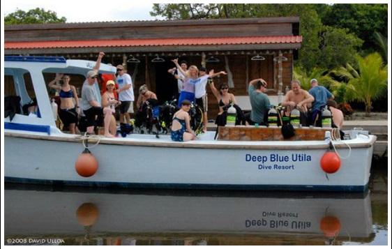 Deep Blue Resort Utila