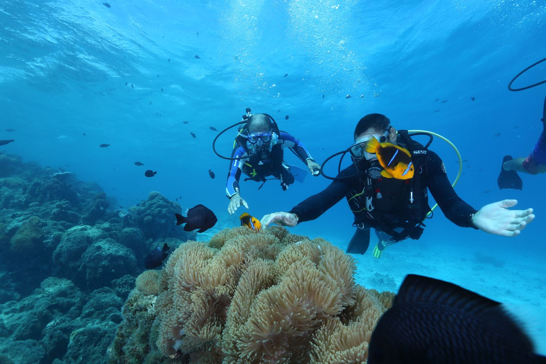 Eleuthera Dive Tahiti Reviews, Photos & Special Rates