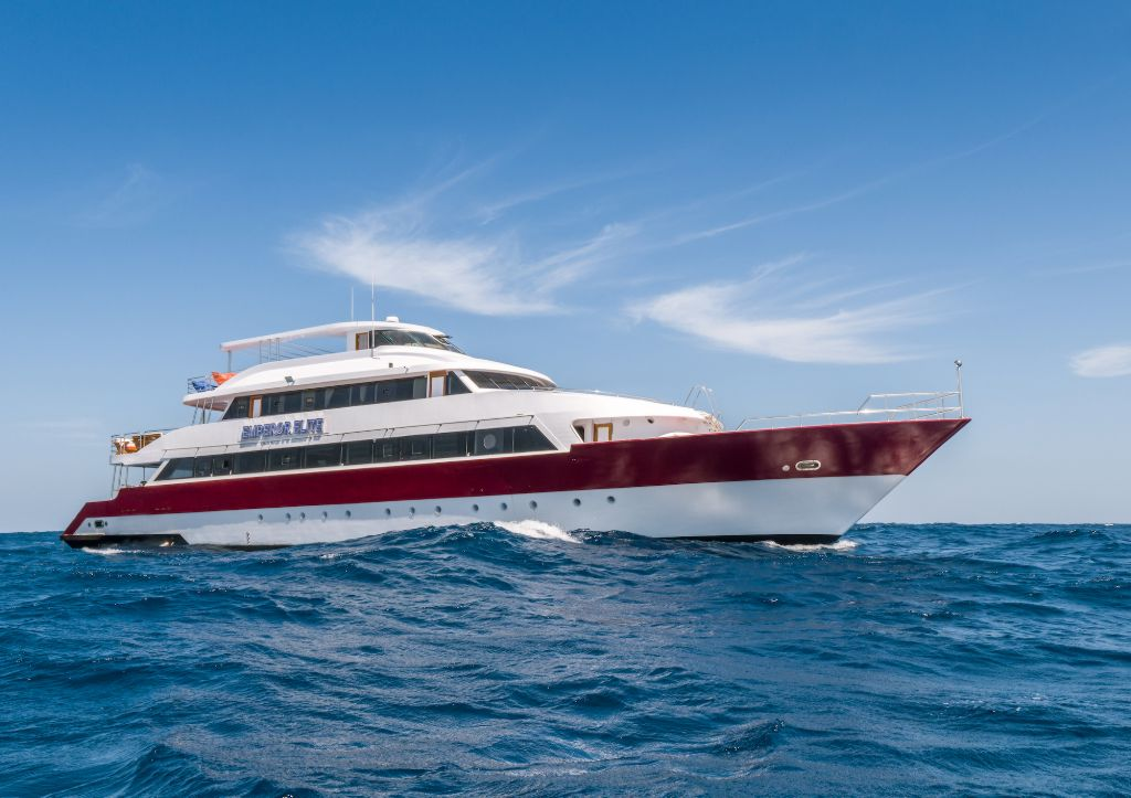 Emperor Elite Liveaboard Reviews & Specials - Bluewater Dive