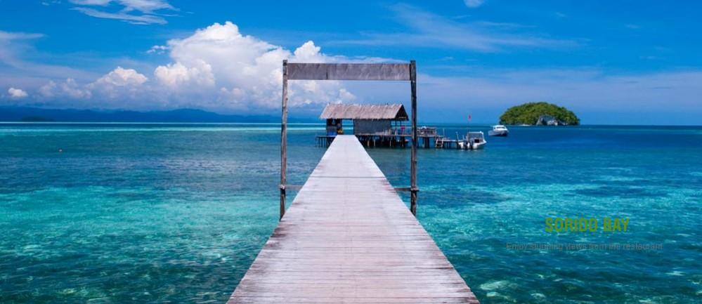 Sorido bay resort raja ampatl reviews specials bluewater dive travel - Raja ampat dive resort reviews ...