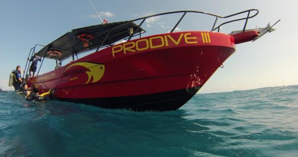 Pro Dive International
