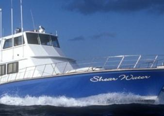 M/V Shear Water Liveaboard