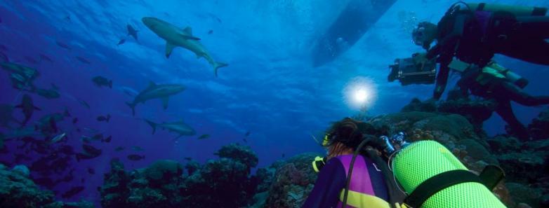 Scuba Diving in Yap