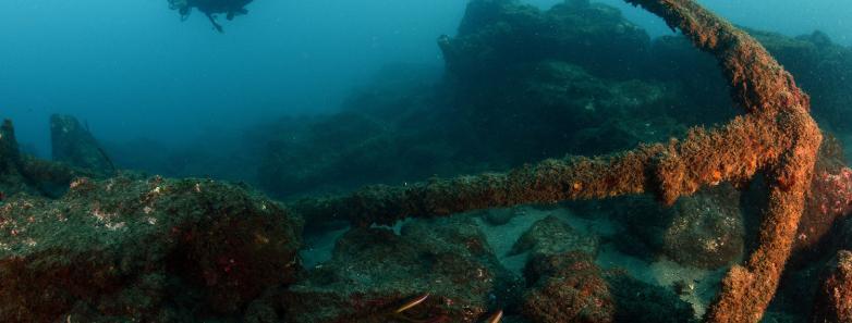 axuba diving in azores