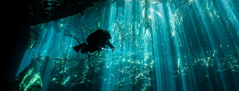 Yucatan scuba diving travel guide dive resorts best time to dive bluewater dive travel - Best dive trips ...