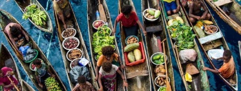 dive Solomon Islands