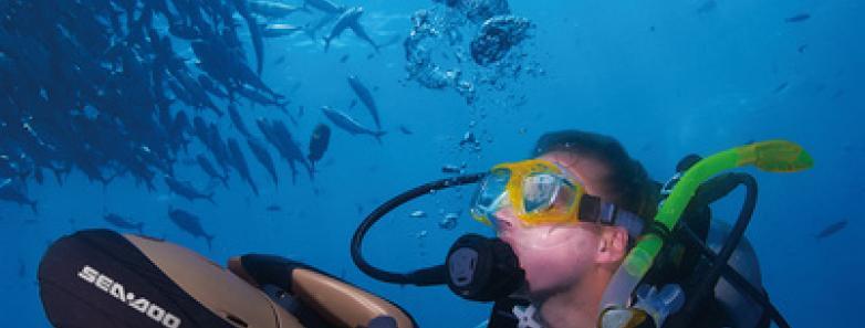 vanuatu diving