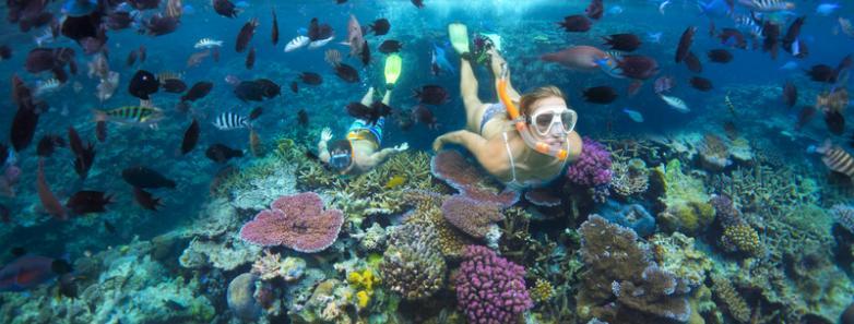 vanuatu scuba diving
