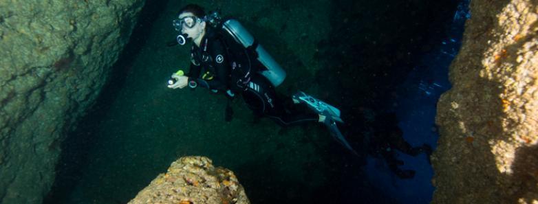la paz diving